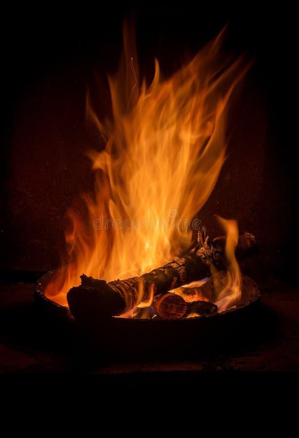 Free Campfire Stock Photo - 47581580