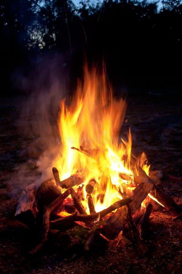 campfire royaltyfri fotografi