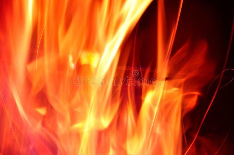 campfire royalty-vrije stock foto