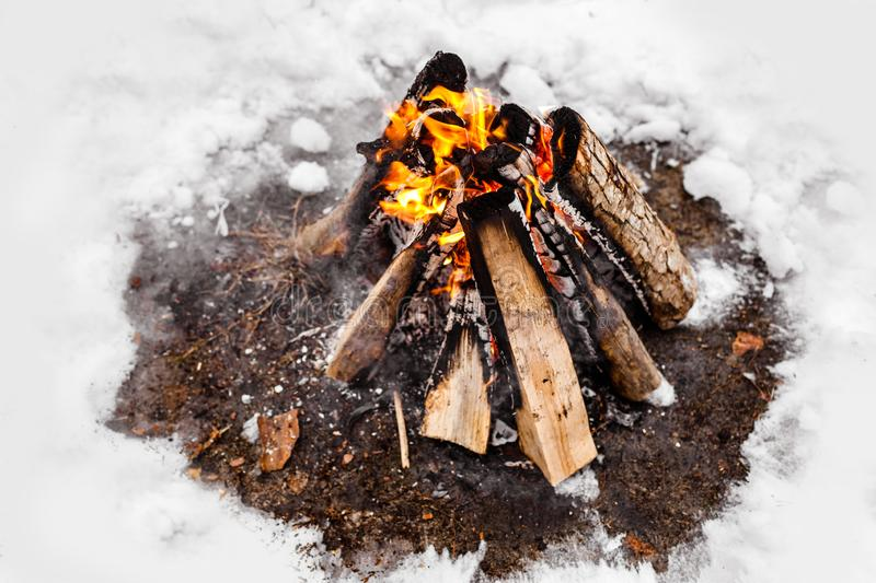 Campfire burns in the snow in the woods.. campfire burning in cold winter. Snow, forest and fire. Winter. Tourism royalty free stock image