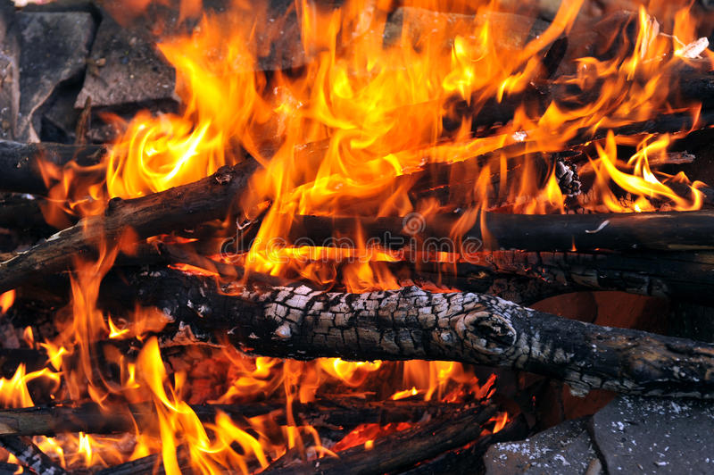 Download Campfire stock image. Image of burning, nature, up, fiery - 33310611
