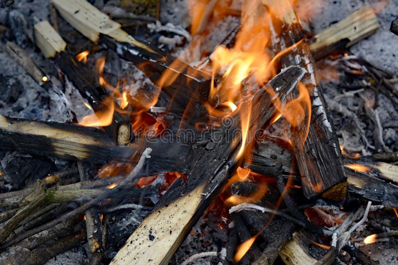 Campfire, Fire, Charcoal, Animal Source Foods royalty free stock photography
