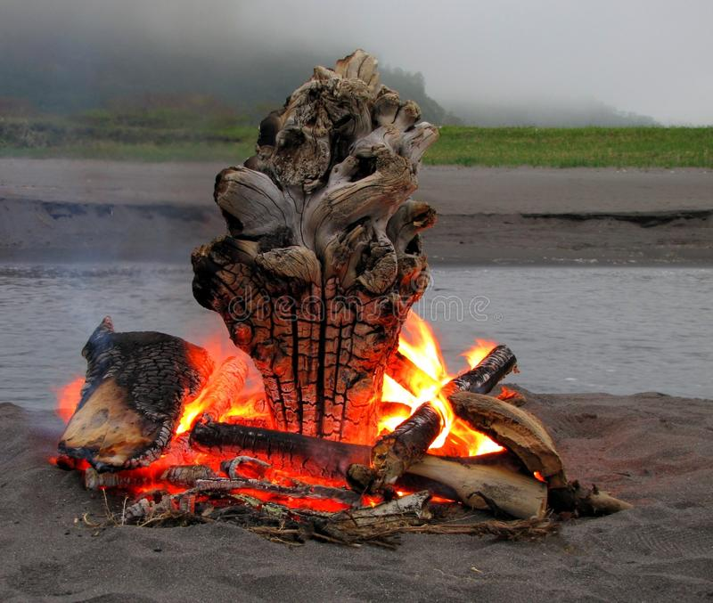 Campfire, Geological Phenomenon, Heat, Wood stock images
