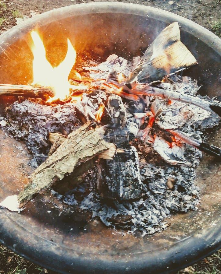 Campfire Log Camping immagine stock