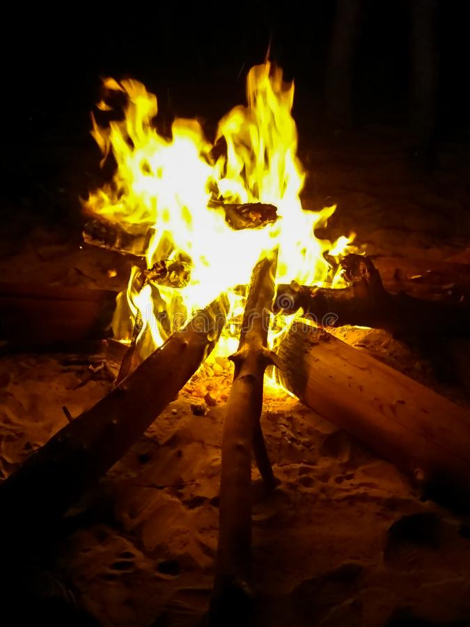 Campfire fotografia de stock royalty free