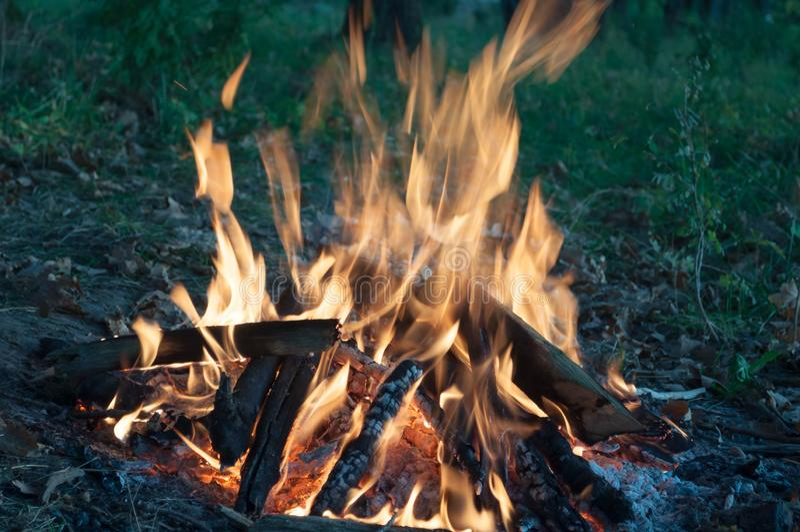 Campfire na natureza potência de fogo imagens de stock