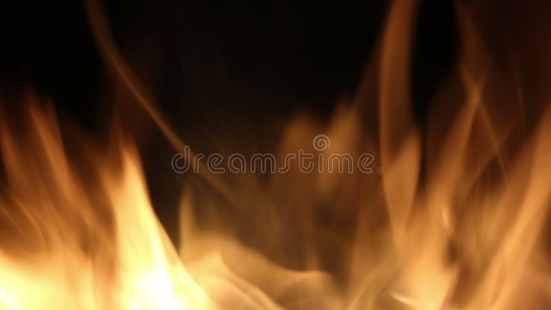 Campfire In The Night. Burning logs in orange flames close up. Background of the fire. Beautiful fire burns brightly royalty free stock images