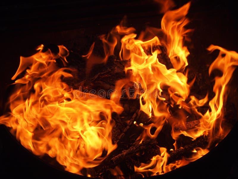 Blazing Campfire royalty free stock photography