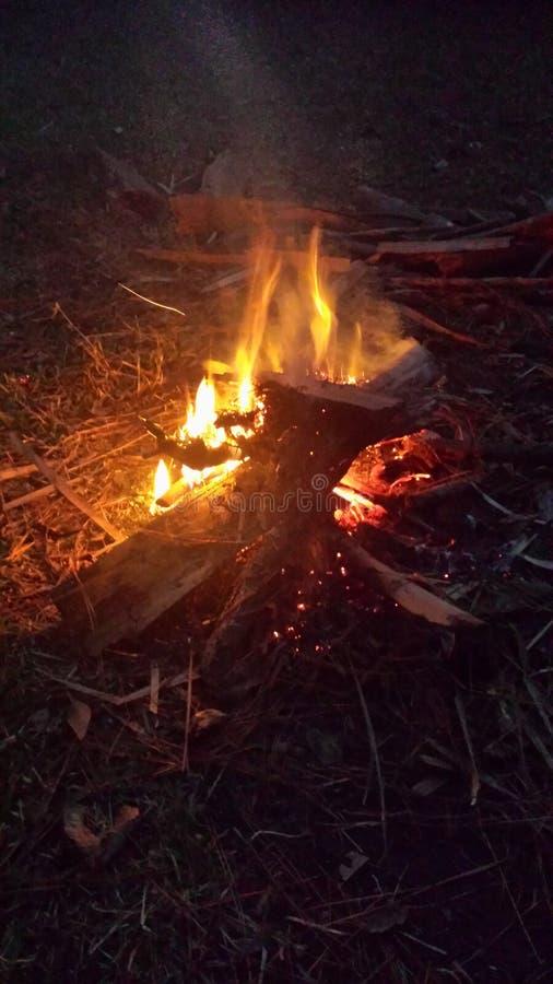 Campfire at night stock image