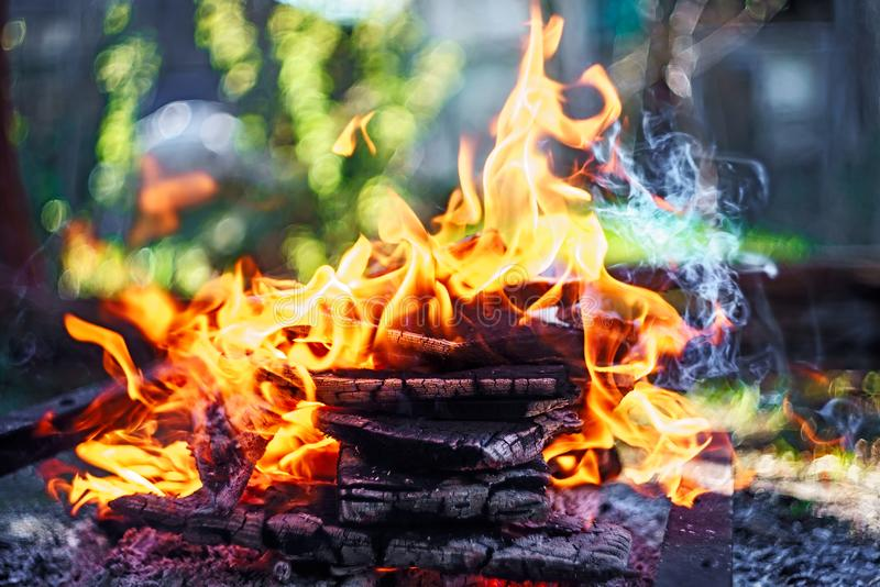 Campfire of wood pile with flame tongues burning at summer sunset at countryside. Natural fire background stock photo