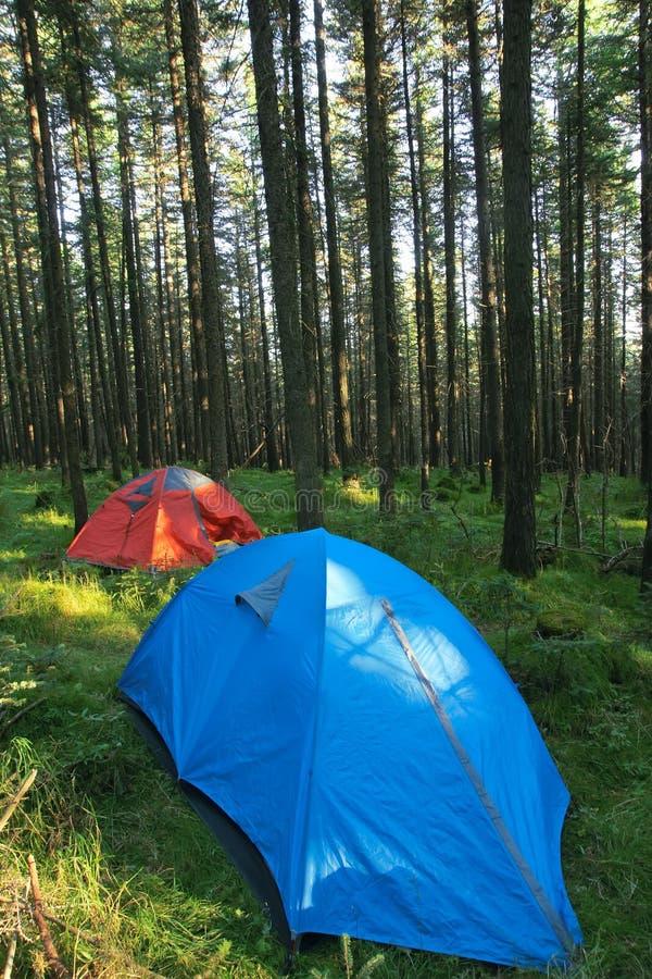 campground imagem de stock