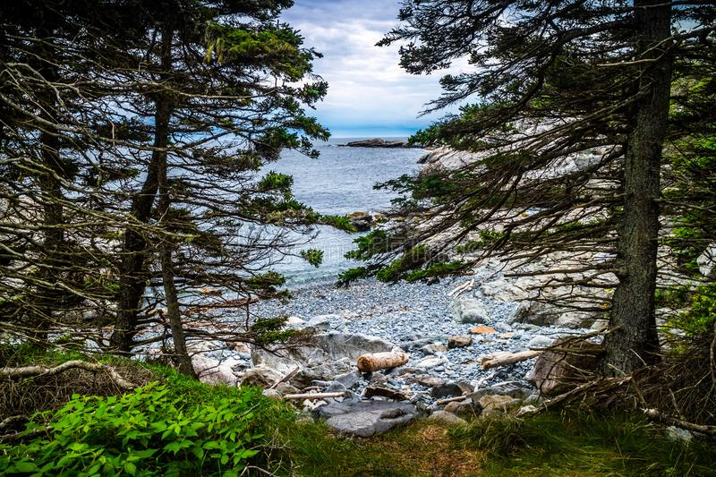 The lovely Duck Harbor Isle au Haut in Acadia National Park, Maine royalty free stock photography