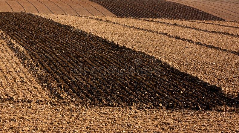 Campi arati dell'azienda agricola immagini stock
