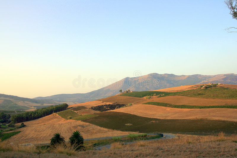 Campi bruciati in Sicilia fotografia stock libera da diritti
