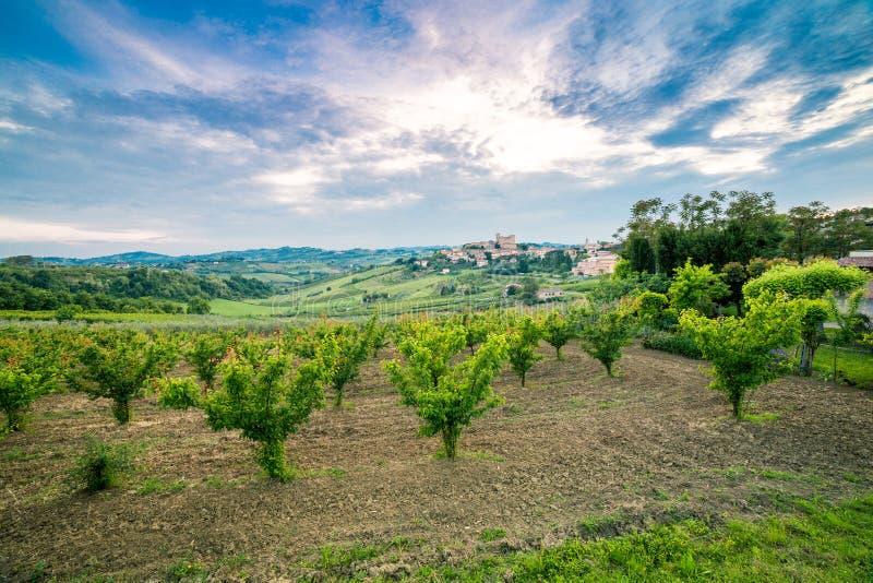 Campi coltivati dominati dal castello fotografia stock