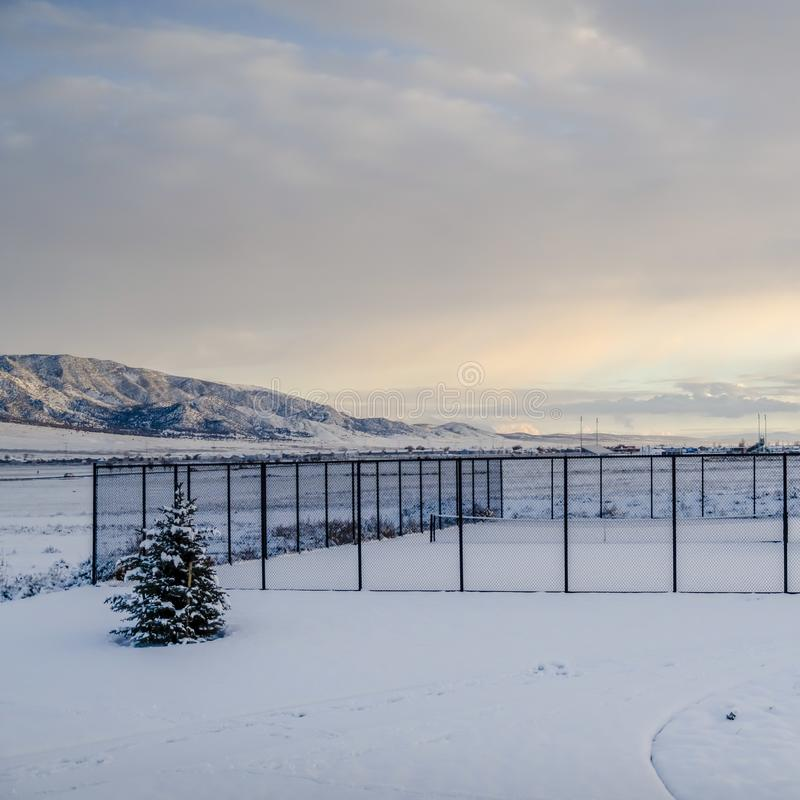 Campi da tennis quadrati della struttura dentro un recinto del collegamento a catena e ricoperti con neve nell'inverno immagine stock libera da diritti