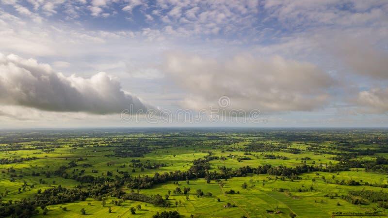 Campi di erba delle nuvole, del cielo e del riso con l'angolo alto fotografie stock