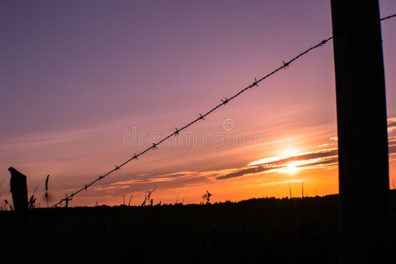 Campi di tramonto fotografia stock