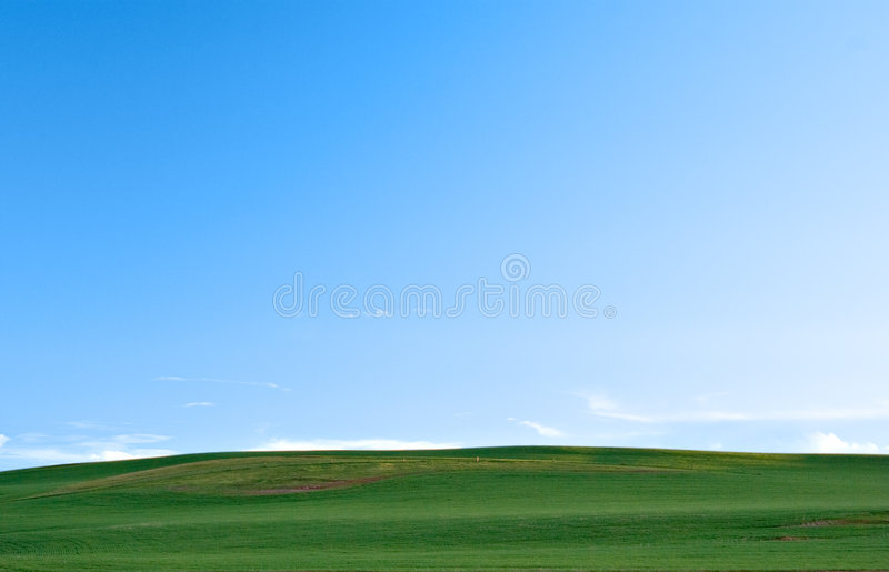 Campi e cielo verdi fotografie stock