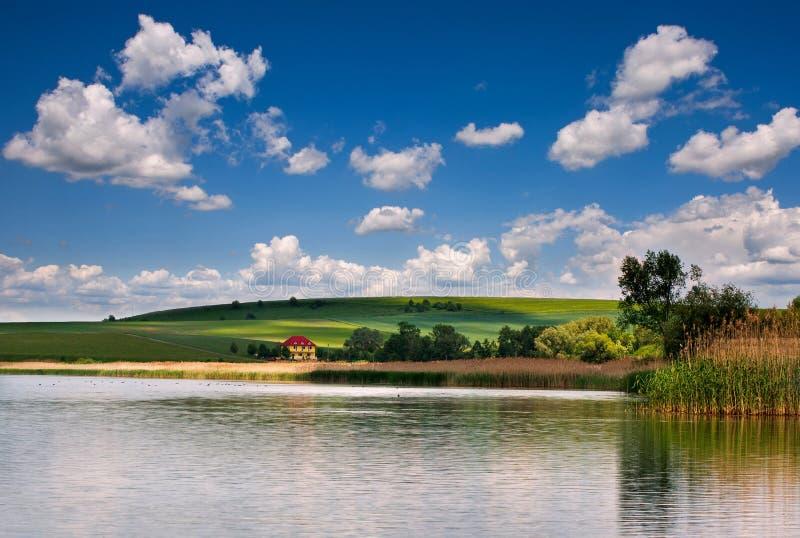 Campi e pascoli rurali di verde del lago del paesaggio della campagna su fondo delle nuvole del cielo blu immagine stock libera da diritti