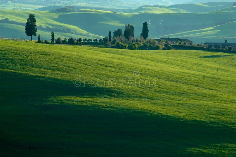 Campi italiani fotografie stock