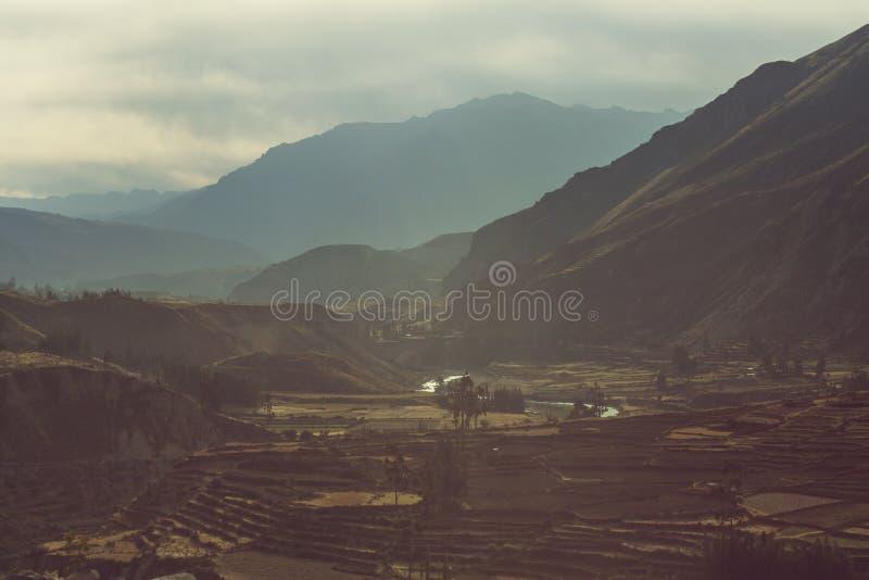 Campi nel Perù immagine stock