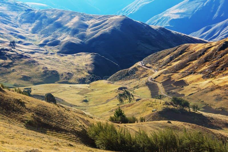 Campi nel Perù fotografia stock libera da diritti