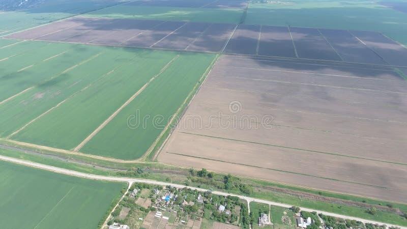 Campi nella vista di Kuban da un'altezza Giovane grano e campo arato un poco più ulteriormente dal villaggio fotografia stock libera da diritti