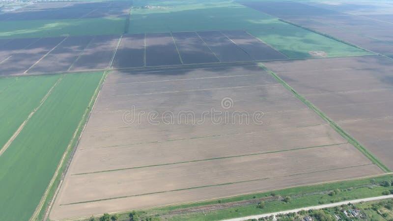 Campi nella vista di Kuban da un'altezza Giovane grano e campo arato un poco più ulteriormente dal villaggio fotografia stock