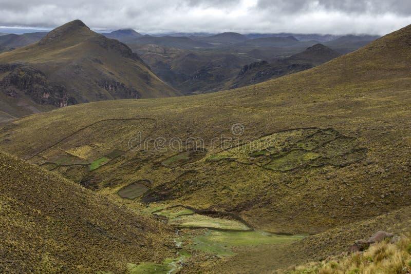Campi nelle Ande immagini stock