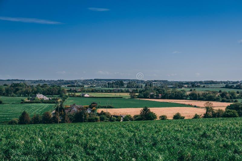 Campi rurali della campagna irlandese vicino a Whitechurch con le case sparse fotografie stock libere da diritti