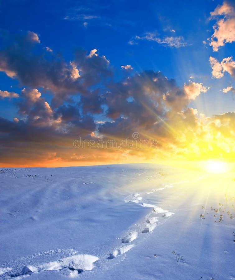 Campi snowbound di inverno alla sera immagine stock libera da diritti