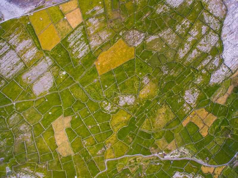 Campi su Aran Islands in Irlanda immagine stock