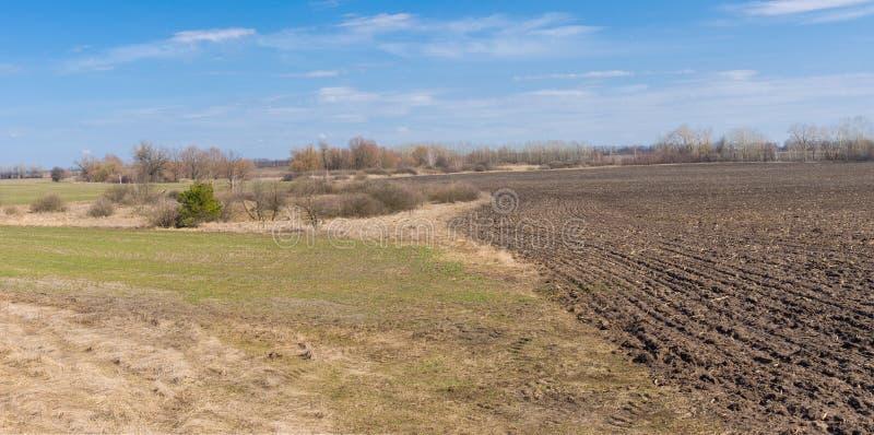 Campi in Ucraina nella stagione primaverile immagini stock libere da diritti