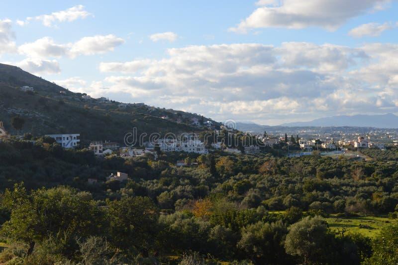 Campi verde oliva verdi vicino a Chania in Grecia immagini stock libere da diritti