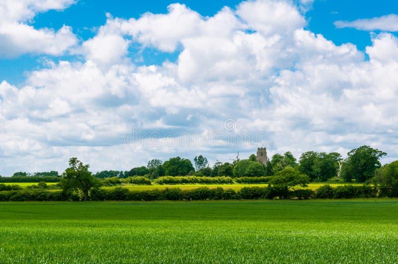 Campi verdi della Suffolk, st Edmunds, Regno Unito della fossa immagine stock