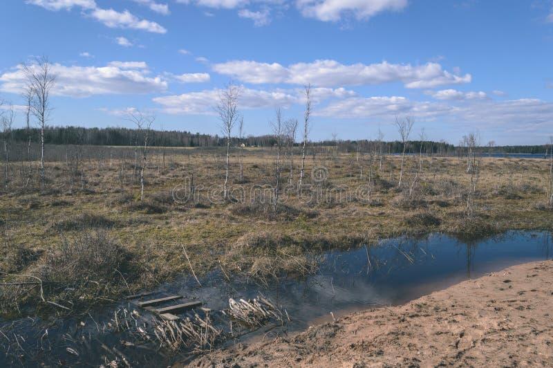 campi vuoti in autunno in campagna - sguardo d'annata del film fotografia stock libera da diritti