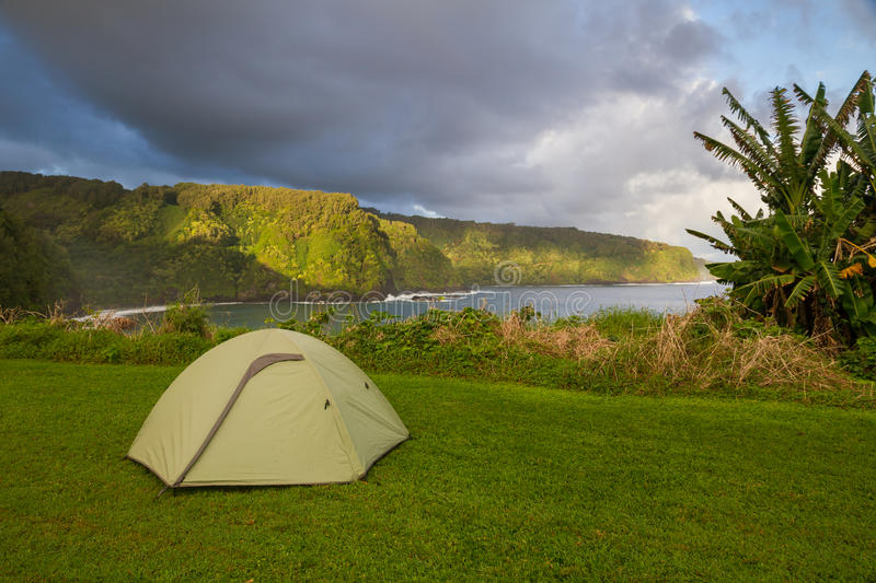 Green Tent Pitched in Lush Maui Coastline stock images