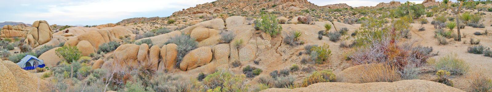 Camping de tente en Joshua Tree National Park - panorama photos libres de droits