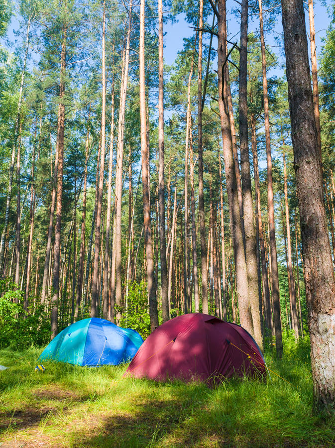 Download Camping In The Forest Royalty Free Stock Photos - Image: 25226418