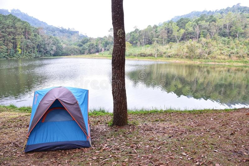 Camping in forest and riverside,Camping is an outdoor activity royalty free stock photo