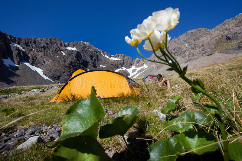 Download Camping in the mountains stock image. Image of lake, mountains - 31966313