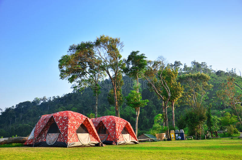 Download Camping with natural stock photo. Image of forest, blue - 33617350