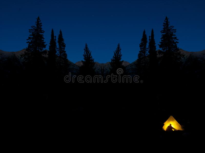 Camping at Night in Glowing Tent Pine Trees Wilderness Darkness royalty free stock photos