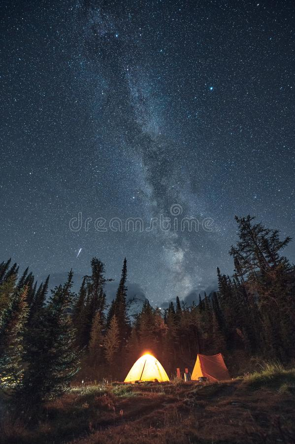 Camping in pine forest with milky way and shooting star at Assiniboine provincial park royalty free stock image