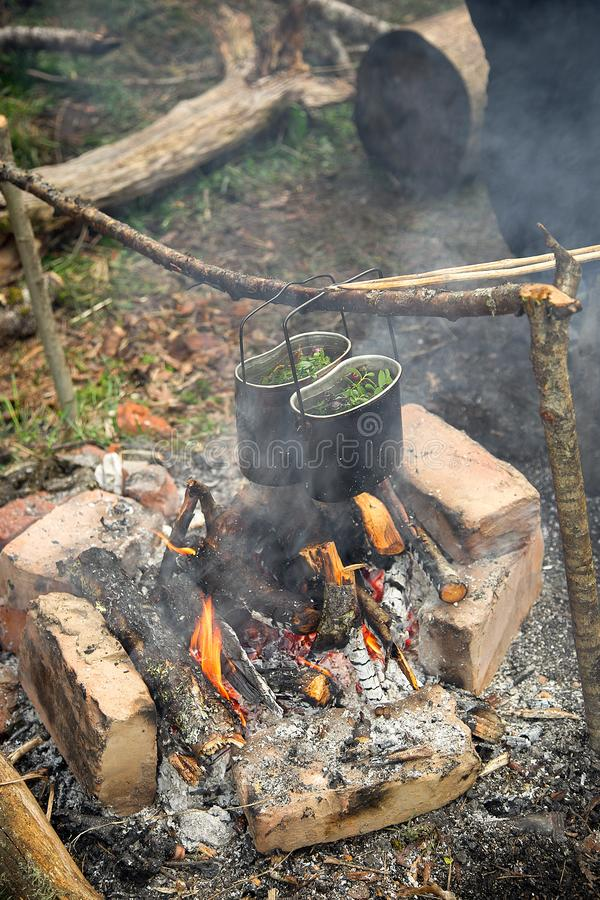 Camping pots with tea brewed from natural herbs. Hang over the campfire in a camping trip royalty free stock image