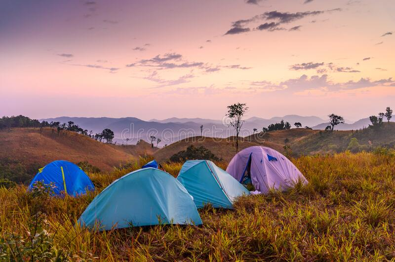 Camping site with tents on green grass on Sanpakha stock image