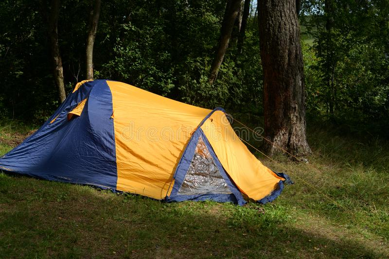 Camping tent in forest royalty free stock photography