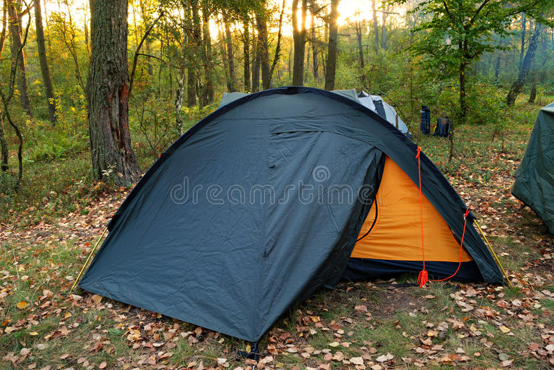 Camping tent in forest and sun royalty free stock photo