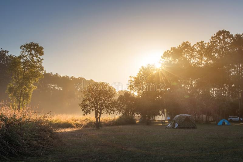 Camping tent on green field near forest during dramatic sunrise at summer misty morning,Concept of outdoor camping adventure royalty free stock images